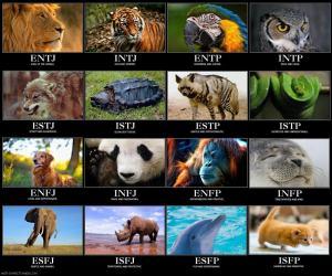 mbti_animals1